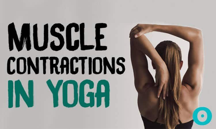 muscle contractions in yoga