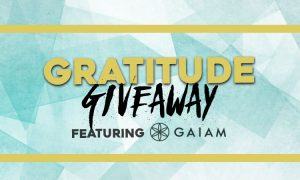 Gratitude Giveaway – GAIAM Premium Citron Sundial Kit and Meditation Cushion ($300 Value)