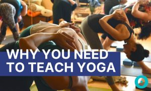 Thinking About Teaching Yoga? Here Are 5 Reasons You Should
