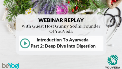 Deep Dive Into Digestion